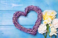 Fleurs et coeur décoratif o de narcisse ou de jonquilles de ressort Photos stock
