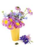 Fleurs et composition d'anomalies images stock