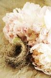 Fleurs et emboîtement de l'oiseau Photographie stock libre de droits