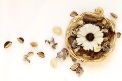 Fleurs et feuilles sèches dans le panier en osier sur le fond blanc Photo libre de droits