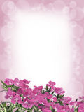 Fleurs et fond de tache floue Photo libre de droits