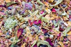 Fleurs et fond secs de feuille Photographie stock libre de droits