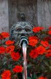 Fleurs et fontaine, Berne, Suisse photos libres de droits