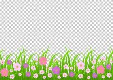 Fleurs et frontière d'herbe, fleurs roses de pré et herbe verte sur un fond transparent, illustration de vecteur, saluant Images libres de droits
