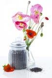 Fleurs et graines de pavot photographie stock