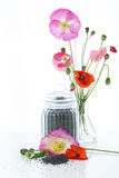 Fleurs et graines de pavot photo stock