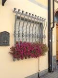 Fleurs et gril rouges en métal photo libre de droits