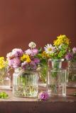Fleurs et herbes médicales colorées dans des pots Photographie stock