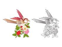 Fleurs et hirondelle Ensemble de dessin coloré témoin et d'ensemble Photo libre de droits
