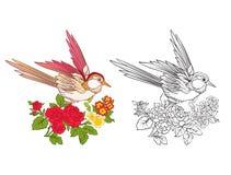 Fleurs et hirondelle Ensemble de dessin coloré témoin et d'ensemble Photos libres de droits