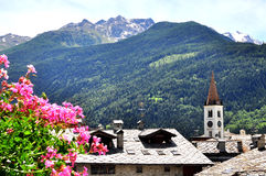 Fleurs et montagnes Photo libre de droits