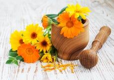 Fleurs et mortier de Calendula photo stock