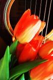 Fleurs et musique Photos libres de droits