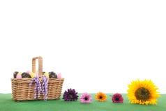 Fleurs et oeufs de pâques colorés de panier sur l'herbe verte Image stock