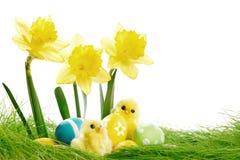 Fleurs et oeufs de pâques jaunes Photos stock
