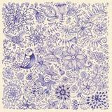 Fleurs et oiseaux tirés par la main illustration de vecteur