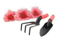 Fleurs et outils de jardin roses Images stock