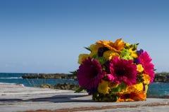 Fleurs et plage Photo stock