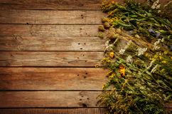 Fleurs et plantes naturelles de pré de fin d'été sur le fond en bois de vintage Image stock