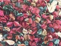 Fleurs et pot-pourri secs de feuilles images libres de droits
