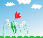 Fleurs et tulipe de source Images libres de droits