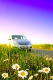 Fleurs et un véhicule. Image libre de droits