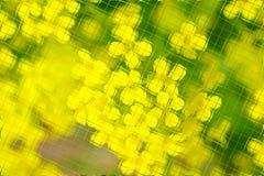 Fleurs et verts dans le modèle de tuiles Photos libres de droits
