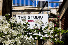 Fleurs et vue vieux Jaffa de bâtiment Images libres de droits