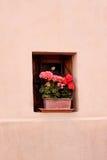 Fleurs extérieures images stock