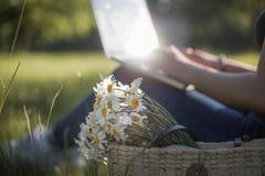 Fleurs extérieures de marguerite de fonctionnement d'ordinateur portable photographie stock