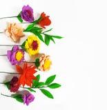 Fleurs faites main colorées sur un fond blanc avec l'espace de copie Photographie stock
