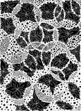 Fleurs, feuilles en cercles Illustration de vecteur Dessin de griffonnage Exercice méditatif Anti effort de livre de coloriage po Image libre de droits