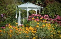 Fleurs fleurissant au jardin botanique de côte sud, Palos Verdes Peninsula, le comté de Los Angeles, la Californie photos libres de droits