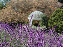 Fleurs fleurissant près d'un belvédère au jardin botanique de côte sud, Palos Verdes Peninsula, le comté de Los Angeles, la Calif photographie stock