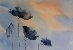 Fleurs foncées de pavot illustration stock