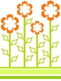 Fleurs formées Photographie stock