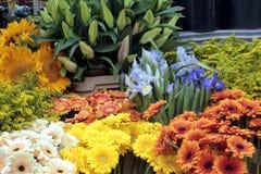 Fleurs fraîches à un marché image stock