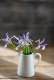 Fleurs fraîches d'iris dans la cruche blanche image stock