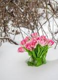 Fleurs fraîches dans la neige Photographie stock
