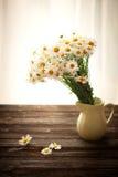 Fleurs fraîches de camomille sur la table en bois Photo stock