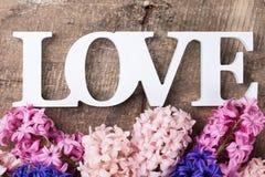 Fleurs fraîches de jacinthes de ressort et amour de mot Image stock