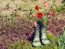 Fleurs fraîches de tulipes de ressort dans le vase à bottes Images stock