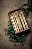 Fleurs fraîches et herbes sur une texture rustique brûlée en bois pour le Ba images stock