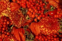 Fleurs, fruits et tomates rouges Photographie stock
