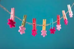 Fleurs goupillées sur la corde à linge Fond de minimalisme Fond bleu, orange, gris Photo de haute résolution Image libre de droits