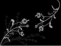 Fleurs grises Photos libres de droits