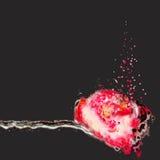 Fleurs grunges de peinture Image libre de droits