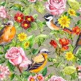 Fleurs, herbe de pré, oiseaux Configuration florale sans joint de cru watercolor Images stock