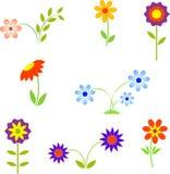 Fleurs, illustrations de fleur Photo libre de droits