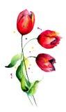Fleurs initiales de tulipes Images stock
